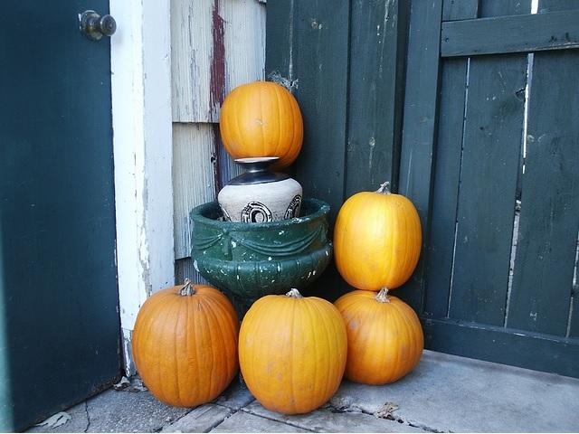 秋 かぼちゃ